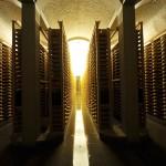 The cellars of Fort Saint-Antoine